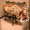 Pařba o Vánocích, jakou jen tak někde neuvidíte!