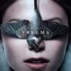 Thelma – vynikající mysteriózní severské drama